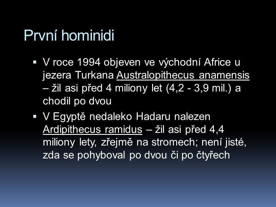 První hominidi