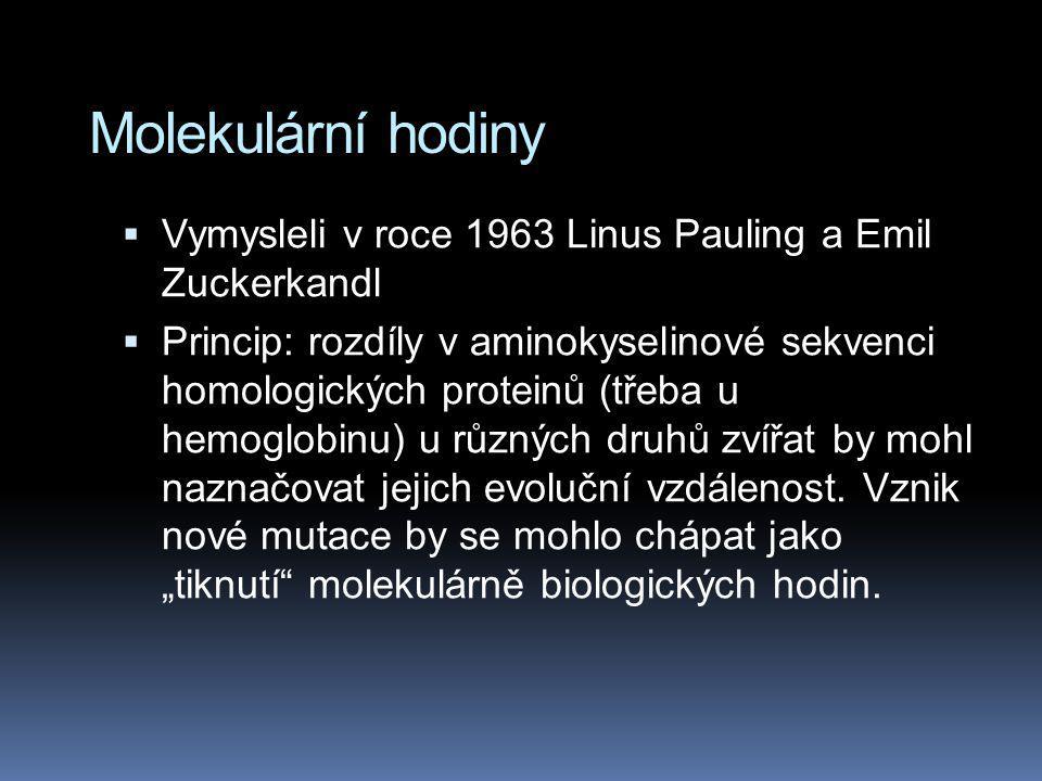 Molekulární hodiny Vymysleli v roce 1963 Linus Pauling a Emil Zuckerkandl.