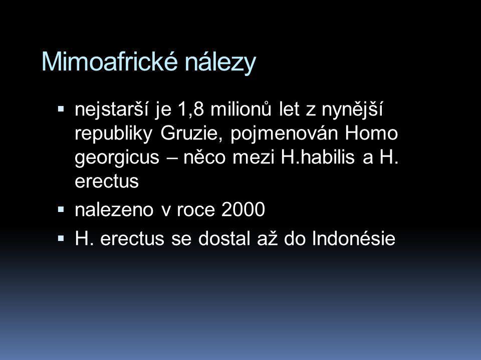 Mimoafrické nálezy nejstarší je 1,8 milionů let z nynější republiky Gruzie, pojmenován Homo georgicus – něco mezi H.habilis a H. erectus.