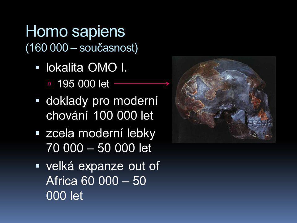 Homo sapiens (160 000 – současnost)