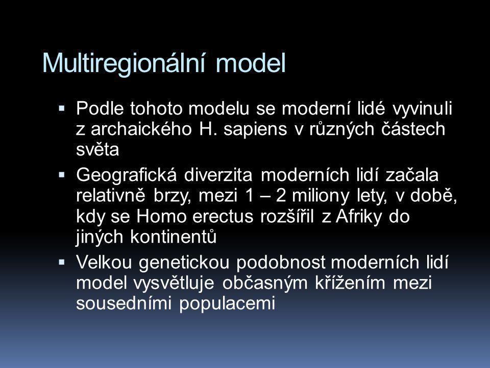 Multiregionální model
