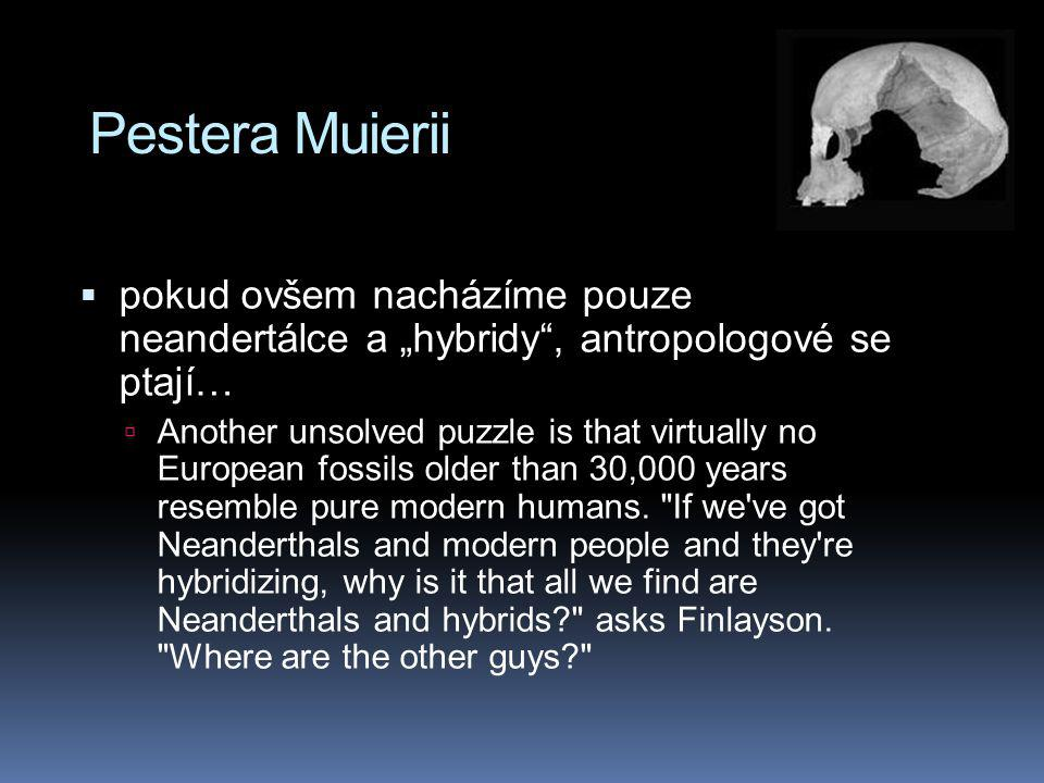 """Pestera Muierii pokud ovšem nacházíme pouze neandertálce a """"hybridy , antropologové se ptají…"""