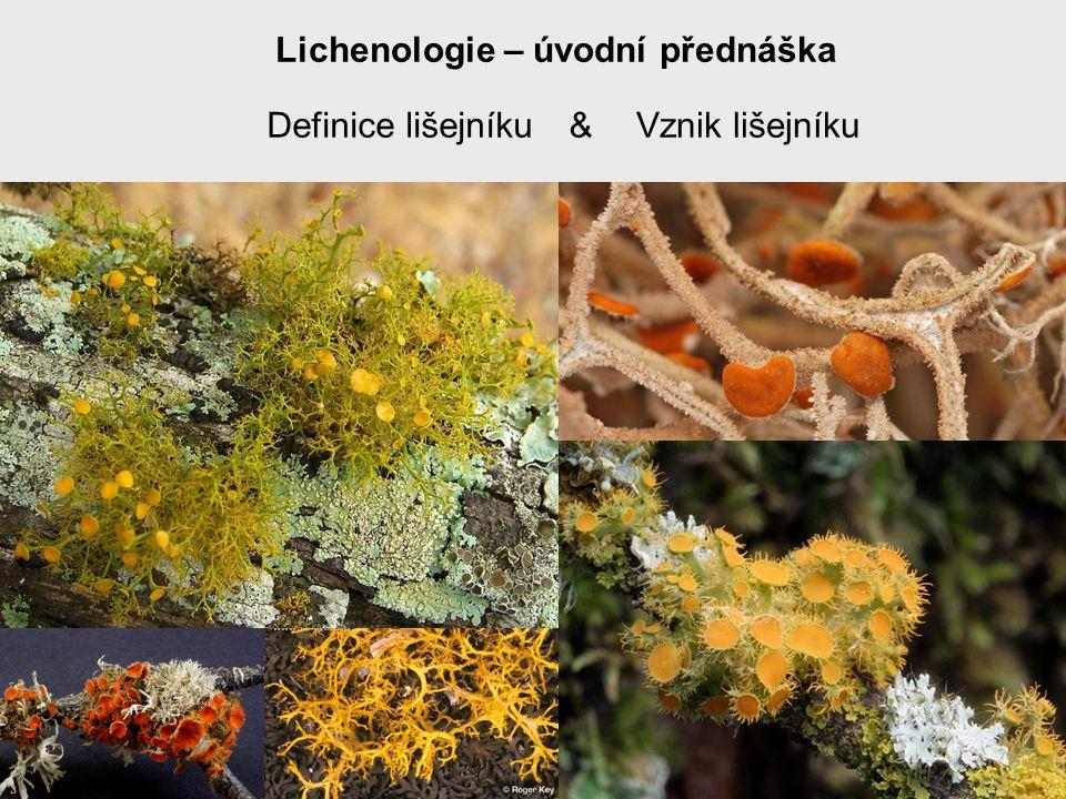 Lichenologie – úvodní přednáška