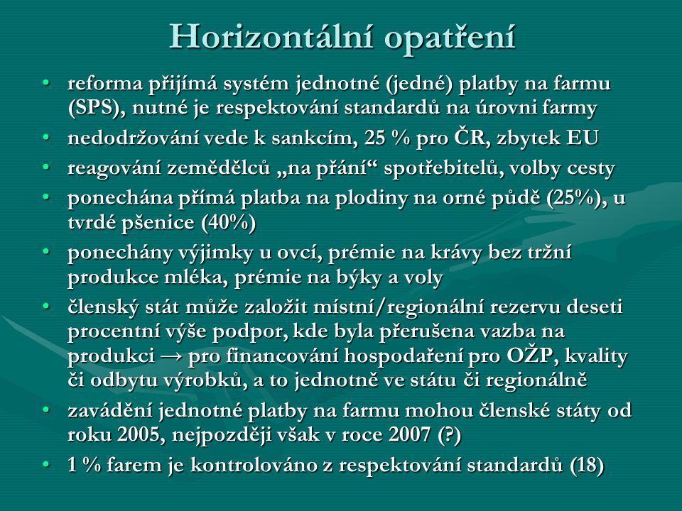 Horizontální opatření