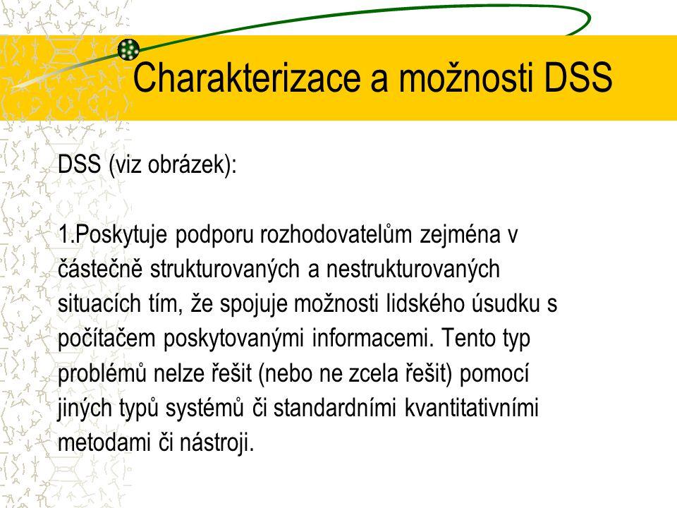 Charakterizace a možnosti DSS