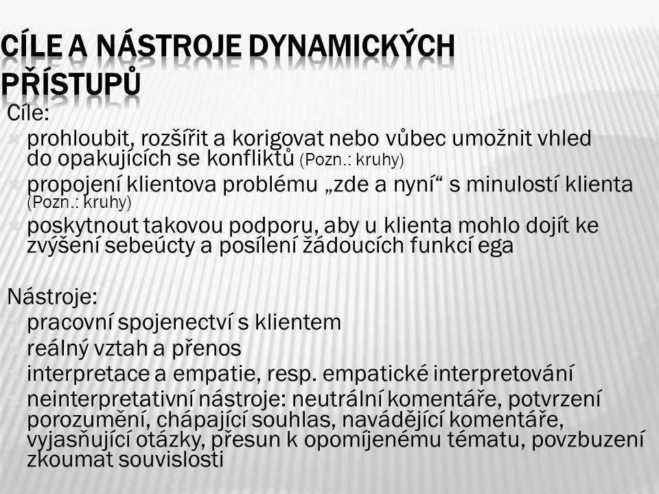 Cíle a nástroje dynamických přístupů