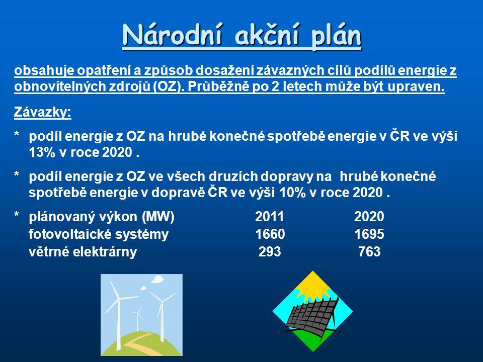 Národní akční plán
