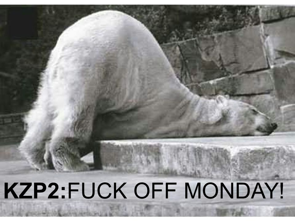 KZP2:FUCK OFF MONDAY!