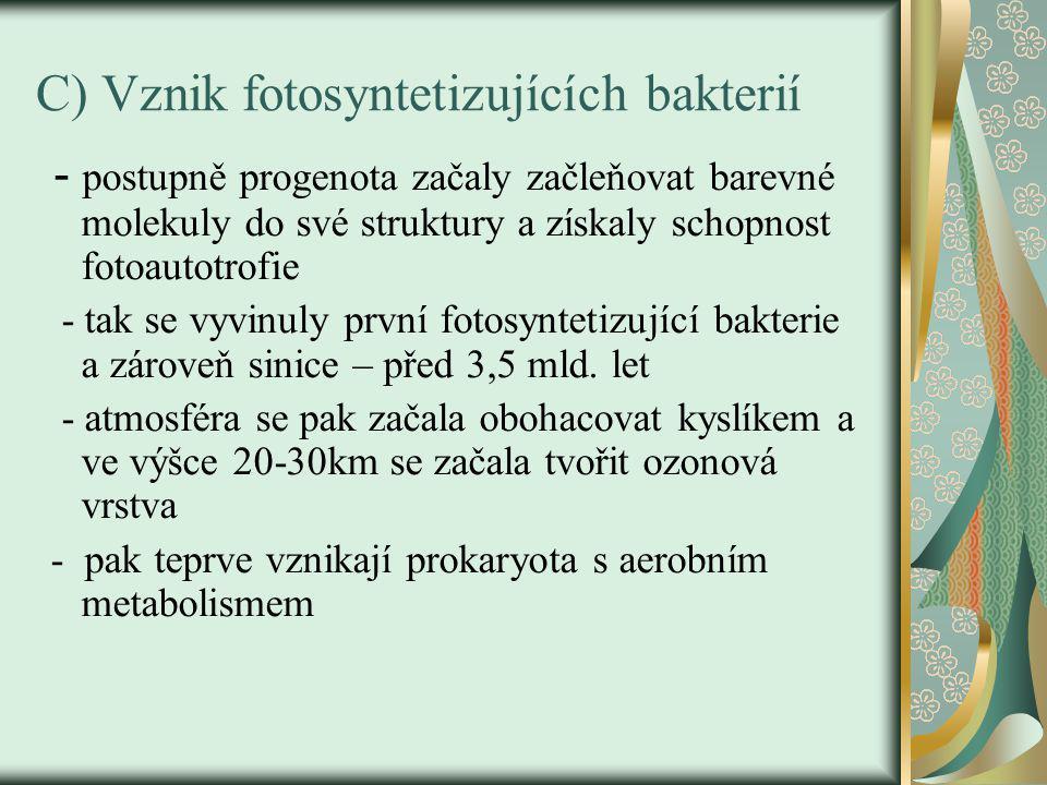C) Vznik fotosyntetizujících bakterií
