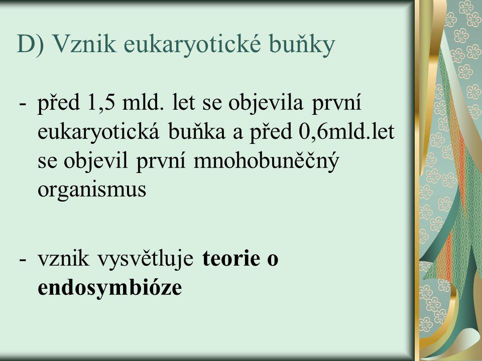 D) Vznik eukaryotické buňky