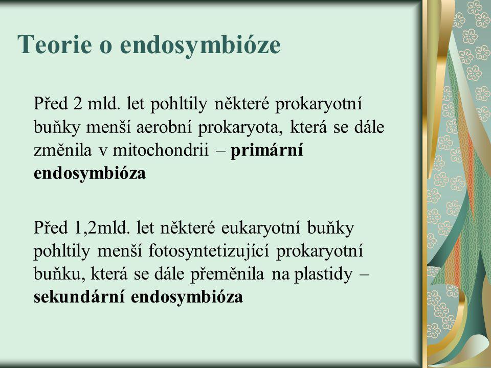 Teorie o endosymbióze