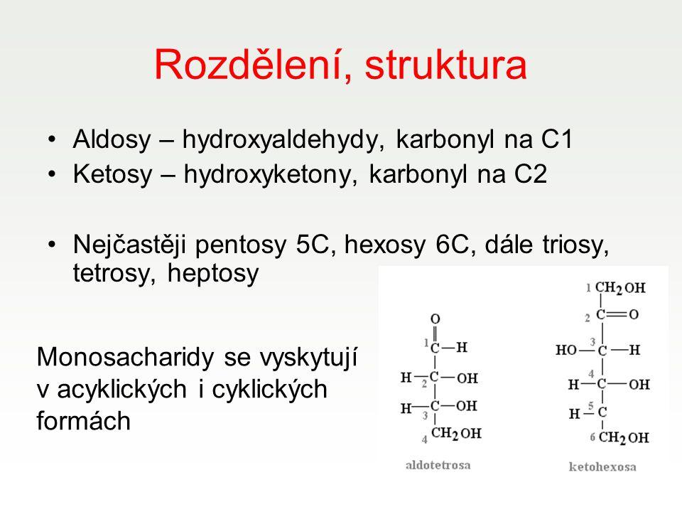 Rozdělení, struktura Aldosy – hydroxyaldehydy, karbonyl na C1