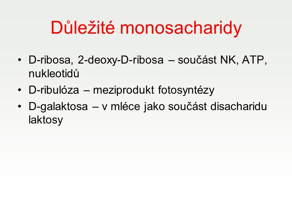 Důležité monosacharidy