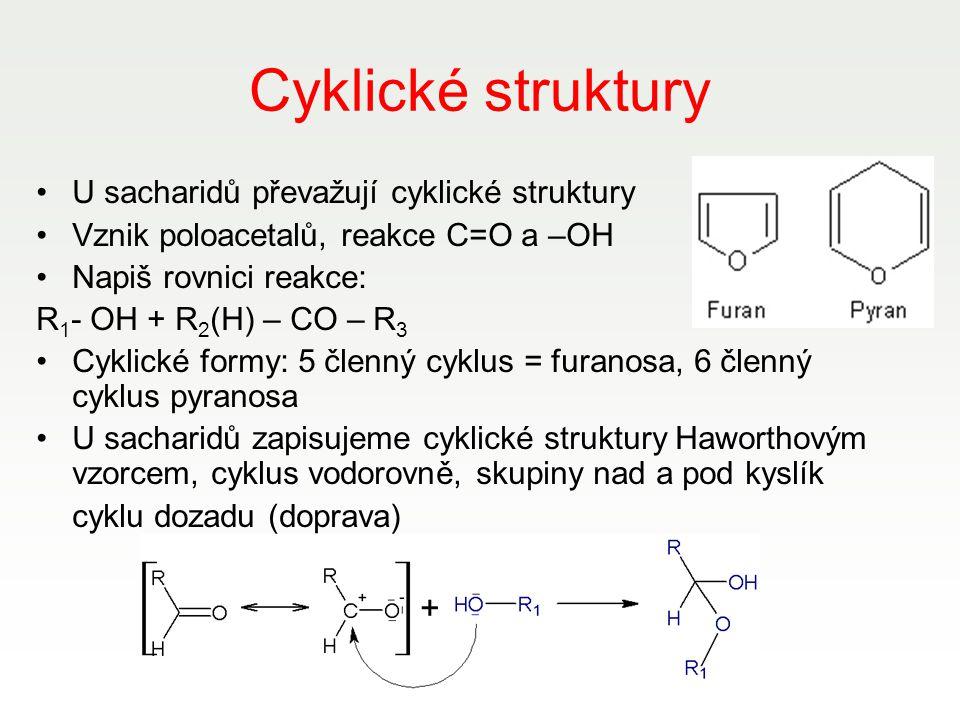 Cyklické struktury U sacharidů převažují cyklické struktury
