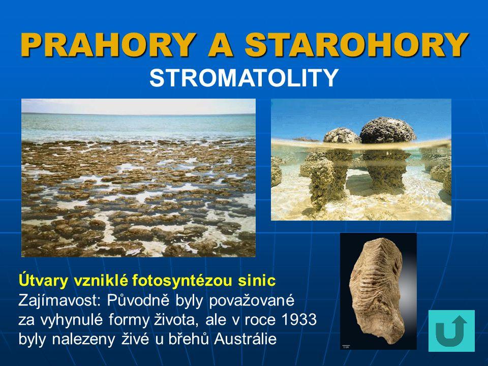 PRAHORY A STAROHORY STROMATOLITY Útvary vzniklé fotosyntézou sinic