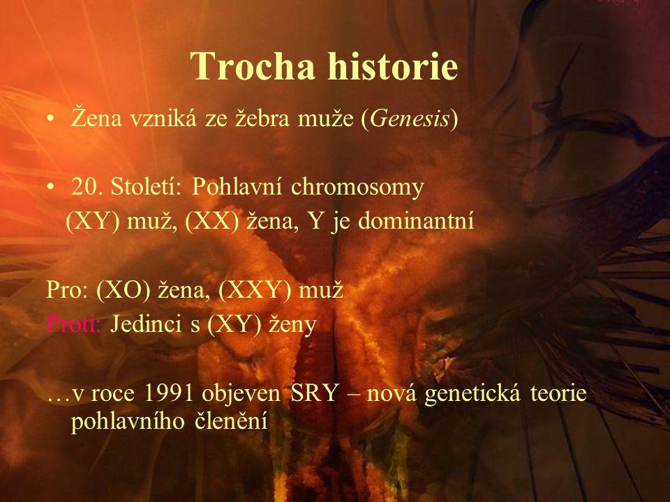 Trocha historie Žena vzniká ze žebra muže (Genesis)