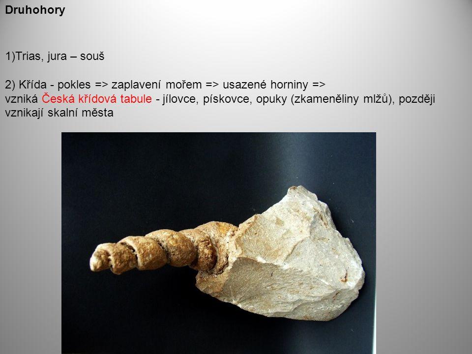 Druhohory Trias, jura – souš. 2) Křída - pokles => zaplavení mořem => usazené horniny =>