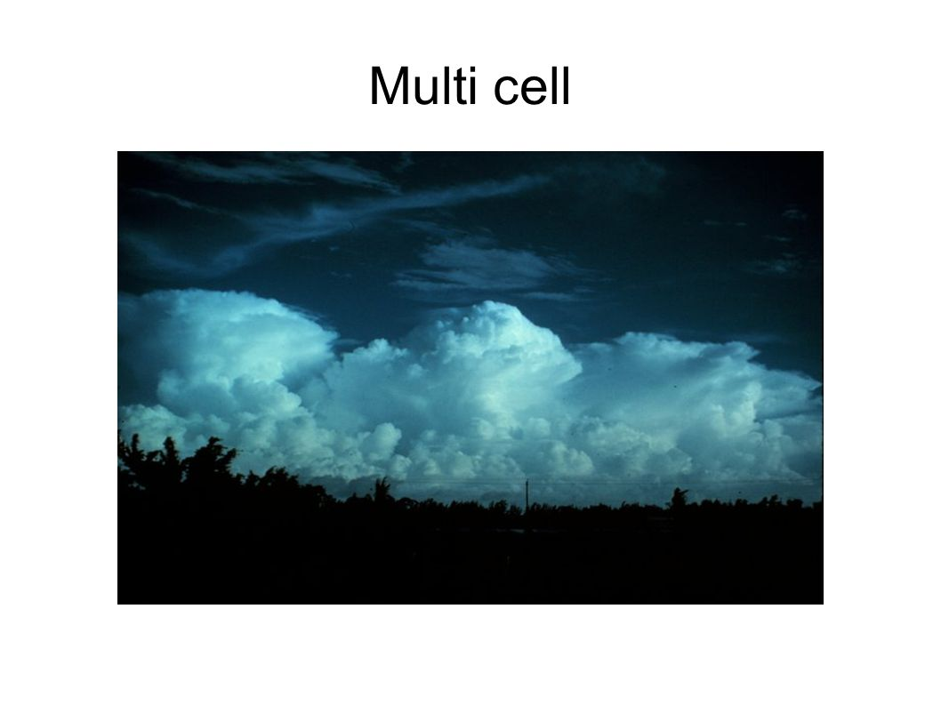 Multi cell