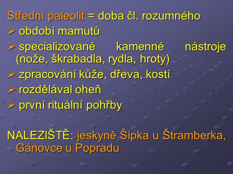 Střední paleolit = doba čl. rozumného