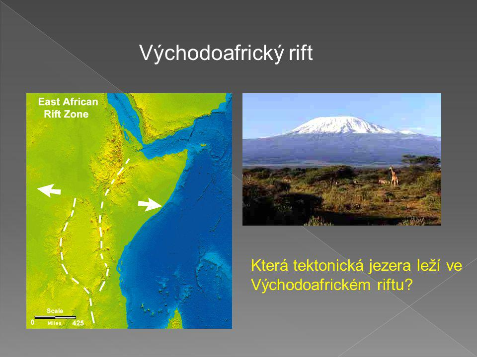 Východoafrický rift Která tektonická jezera leží ve Východoafrickém riftu