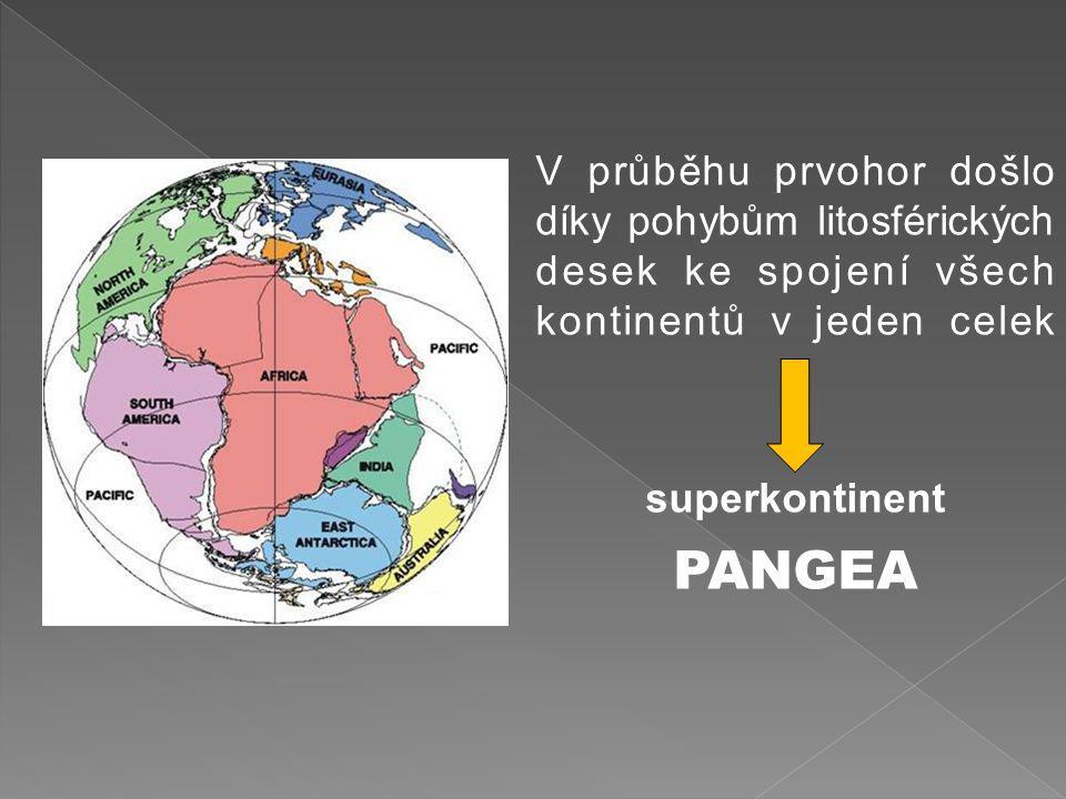 V průběhu prvohor došlo díky pohybům litosférických desek ke spojení všech kontinentů v jeden celek