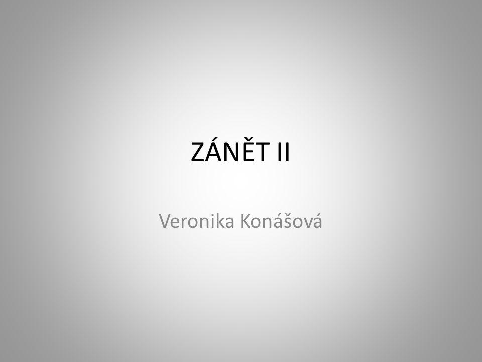 ZÁNĚT II Veronika Konášová