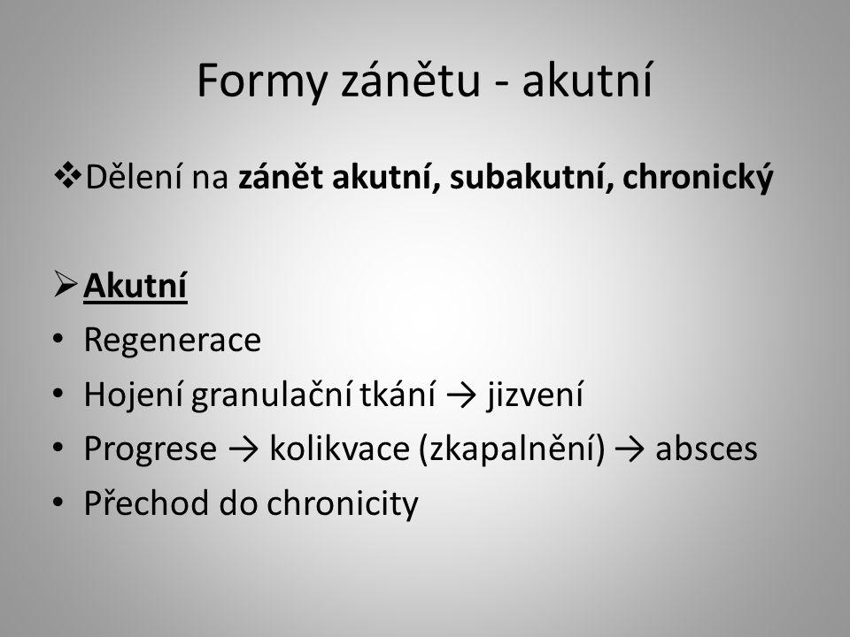 Formy zánětu - akutní Dělení na zánět akutní, subakutní, chronický