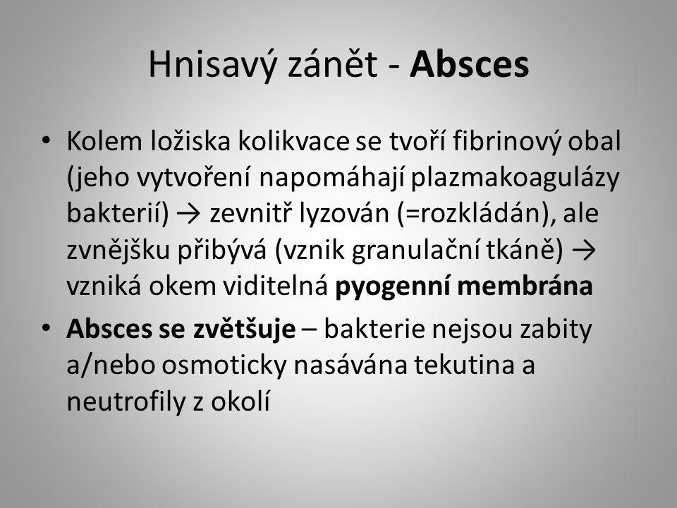 Hnisavý zánět - Absces