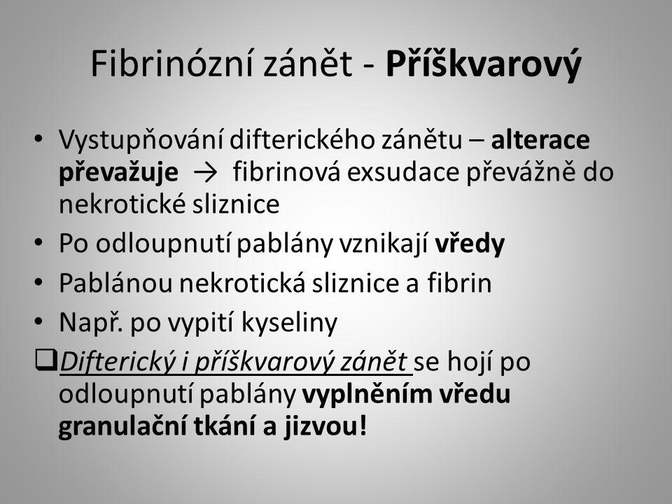 Fibrinózní zánět - Příškvarový
