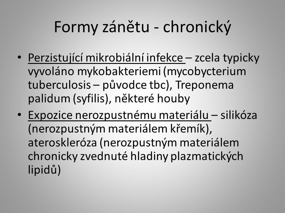 Formy zánětu - chronický