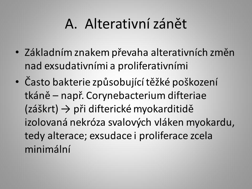 A. Alterativní zánět Základním znakem převaha alterativních změn nad exsudativními a proliferativními.