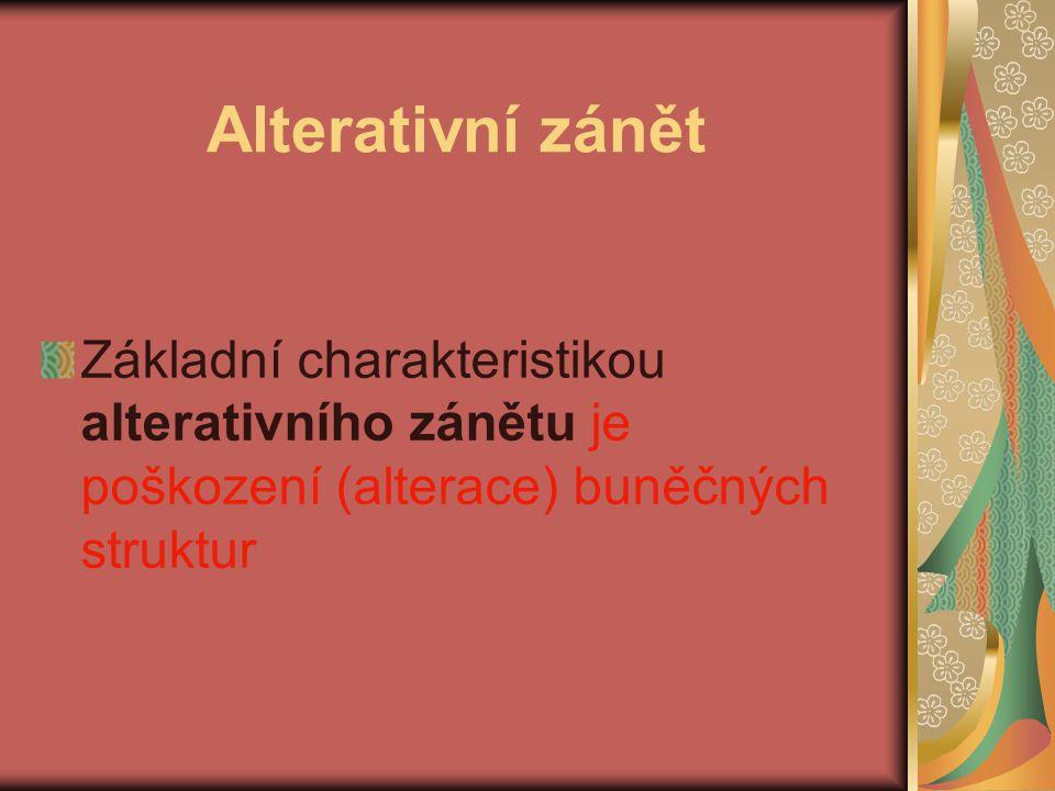 Alterativní zánět Základní charakteristikou alterativního zánětu je poškození (alterace) buněčných struktur.