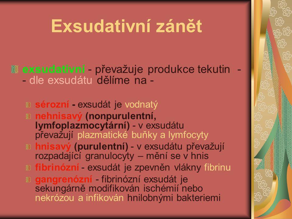 Exsudativní zánět exsudativní - převažuje produkce tekutin -- dle exsudátu dělíme na - sérozní - exsudát je vodnatý.