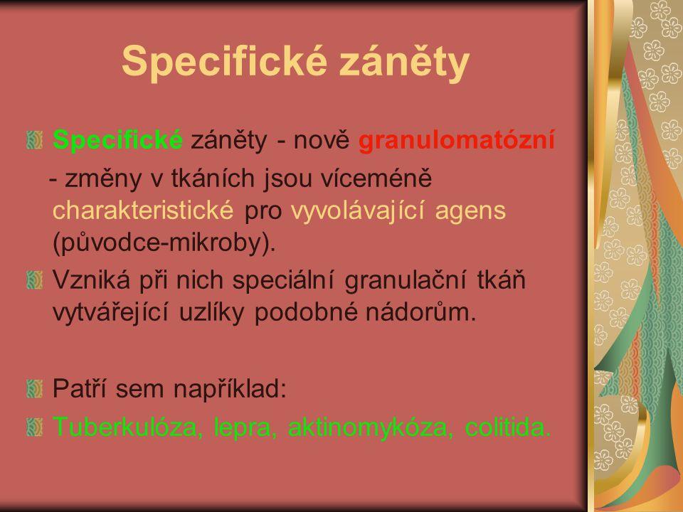 Specifické záněty Specifické záněty - nově granulomatózní