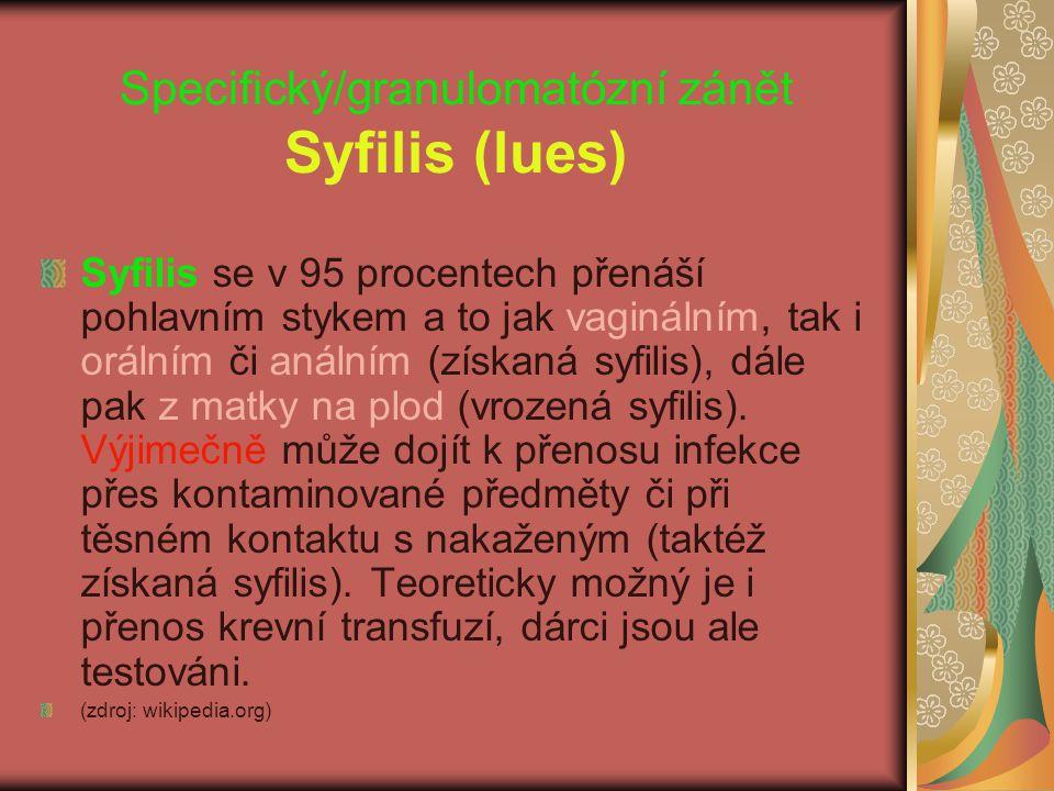 Specifický/granulomatózní zánět Syfilis (lues)