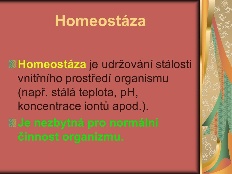 Homeostáza Homeostáza je udržování stálosti vnitřního prostředí organismu (např. stálá teplota, pH, koncentrace iontů apod.).