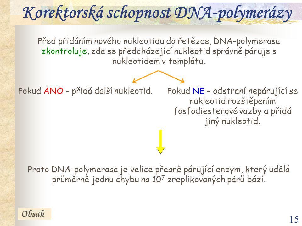 Korektorská schopnost DNA-polymerázy