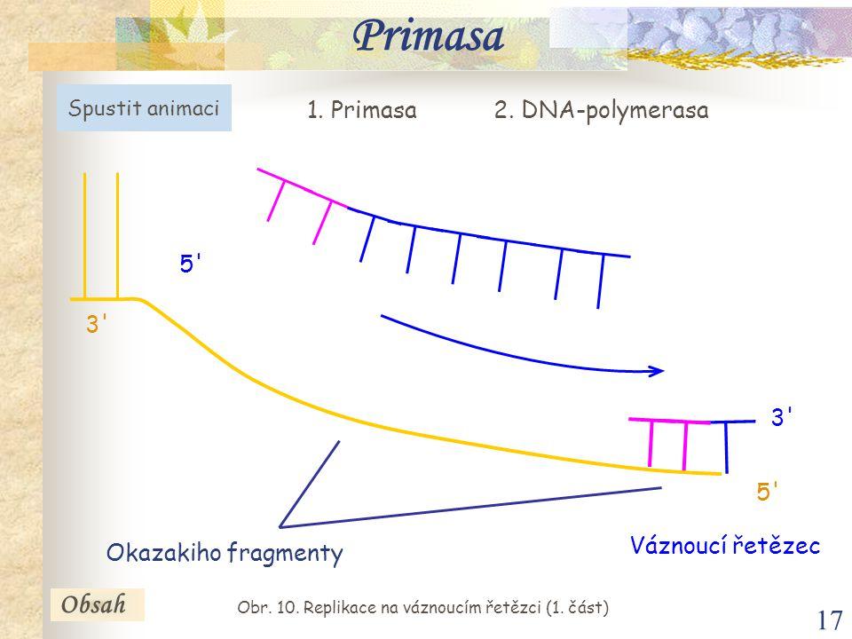 Obr. 10. Replikace na váznoucím řetězci (1. část)