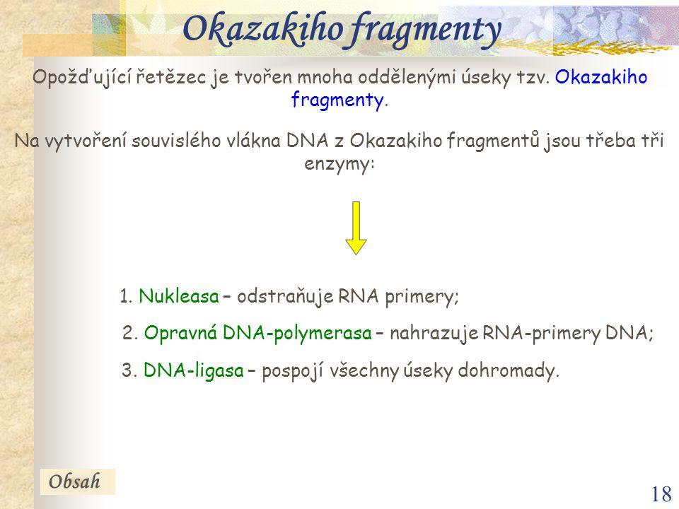 Okazakiho fragmenty Obsah