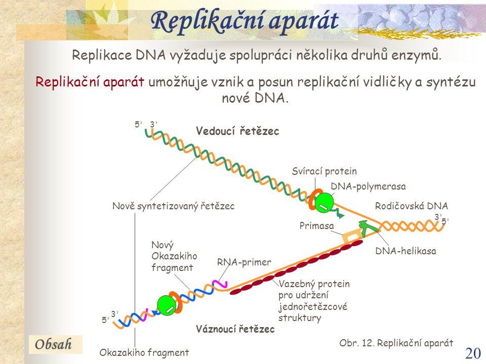 Replikační aparát Obsah
