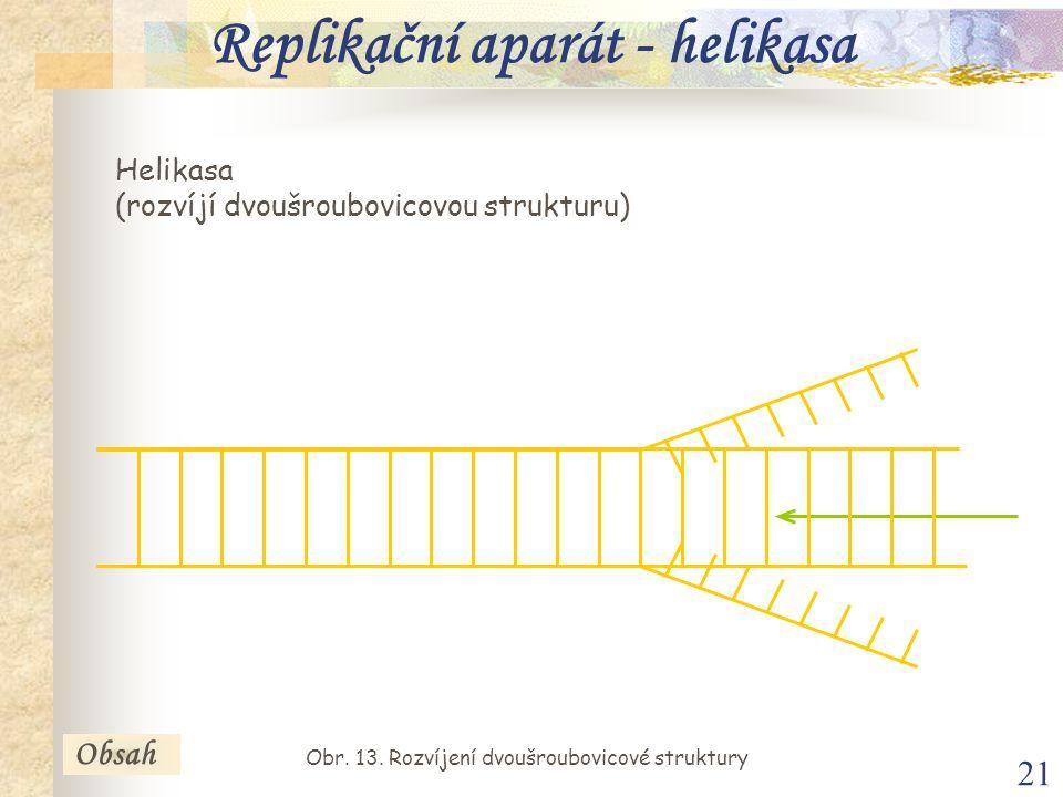 Replikační aparát - helikasa