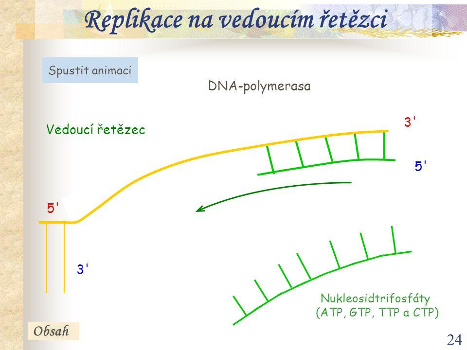 Replikace na vedoucím řetězci