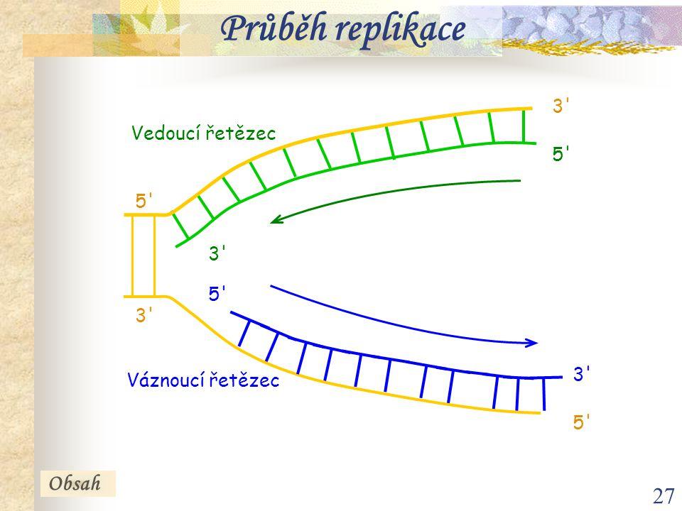 Průběh replikace Obsah 3 Vedoucí řetězec 5 5 3 5 3 3