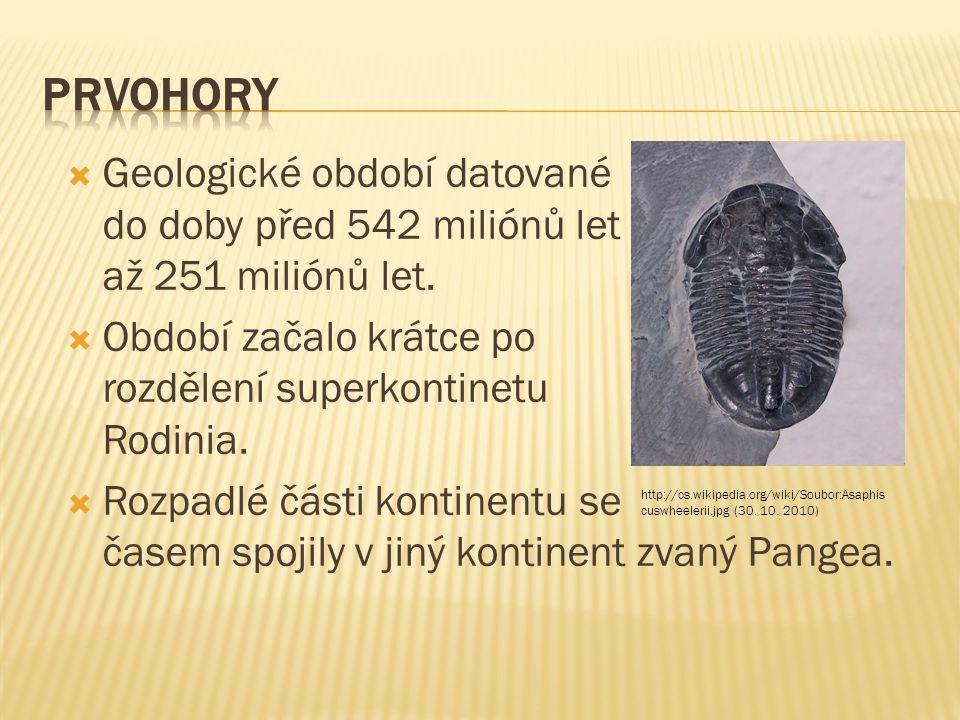Prvohory Geologické období datované do doby před 542 miliónů let až 251 miliónů let. Období začalo krátce po rozdělení superkontinetu Rodinia.