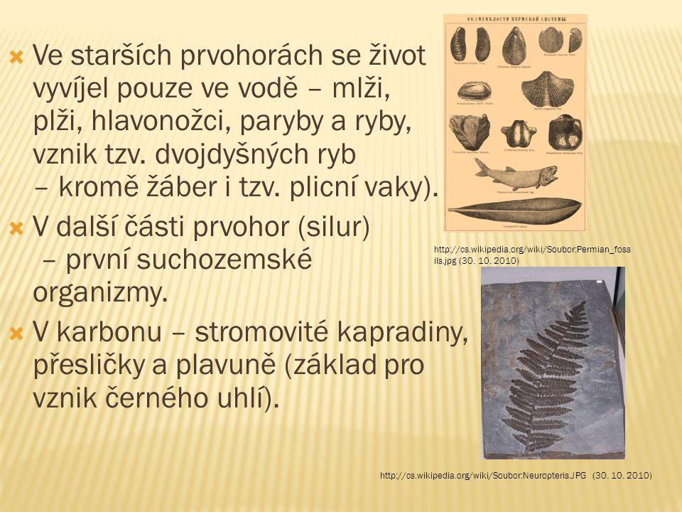 V další části prvohor (silur) – první suchozemské organizmy.
