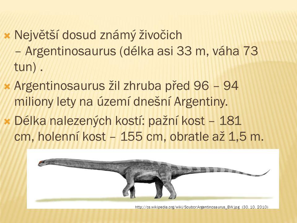Největší dosud známý živočich – Argentinosaurus (délka asi 33 m, váha 73 tun) .