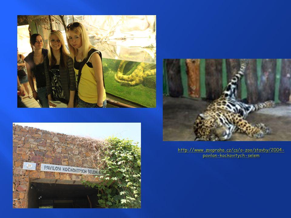 http://www.zoopraha.cz/cs/o-zoo/stavby/2004-pavilon-kockovitych-selem