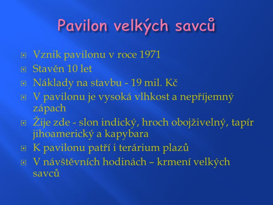 Pavilon velkých savců Vznik pavilonu v roce 1971 Stavěn 10 let