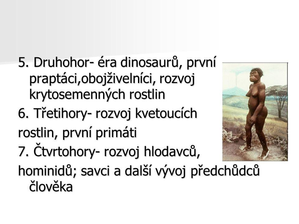 5. Druhohor- éra dinosaurů, první praptáci,obojživelníci, rozvoj krytosemenných rostlin