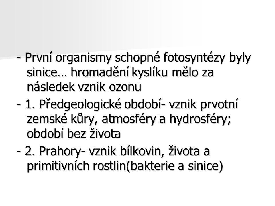 - První organismy schopné fotosyntézy byly sinice… hromadění kyslíku mělo za následek vznik ozonu